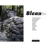 Vorschau: Panico Verlag Bleau en Bloc - Boulderführer - Bild 2